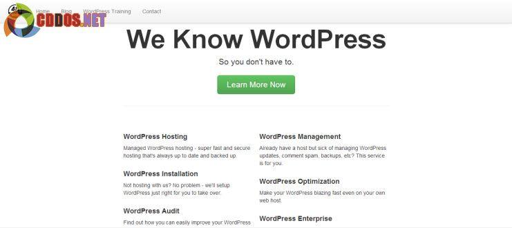 WordPress Boostrap Starter Themes