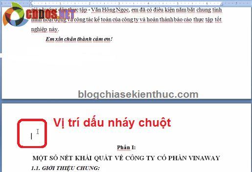 Hướng dẫn đánh số trang trong Word 2007