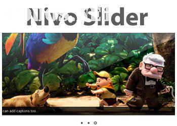 Slide ảnh miễn phí cho WordPress