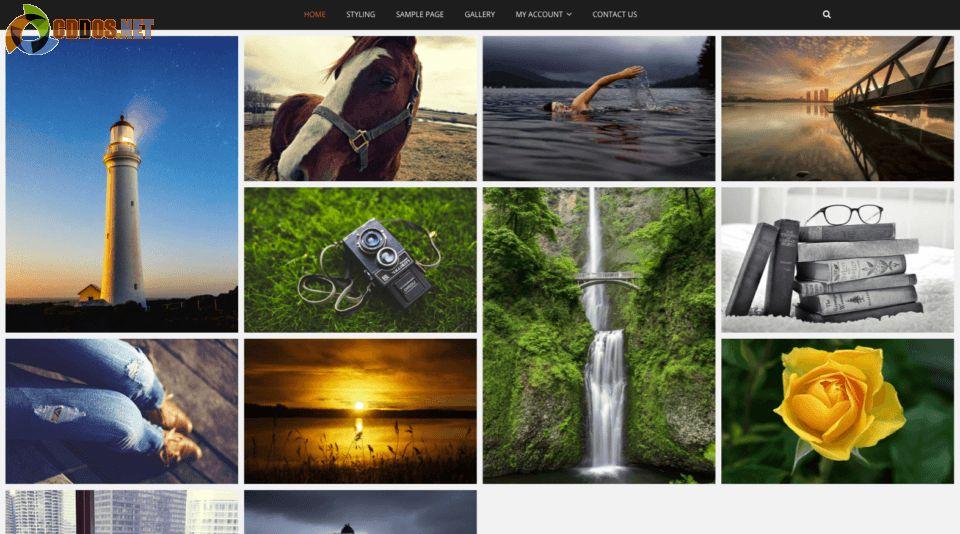 pixgraphy-theme