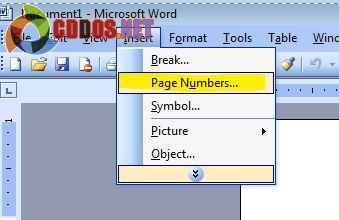 danh-so-trang-trong-word-2003-1