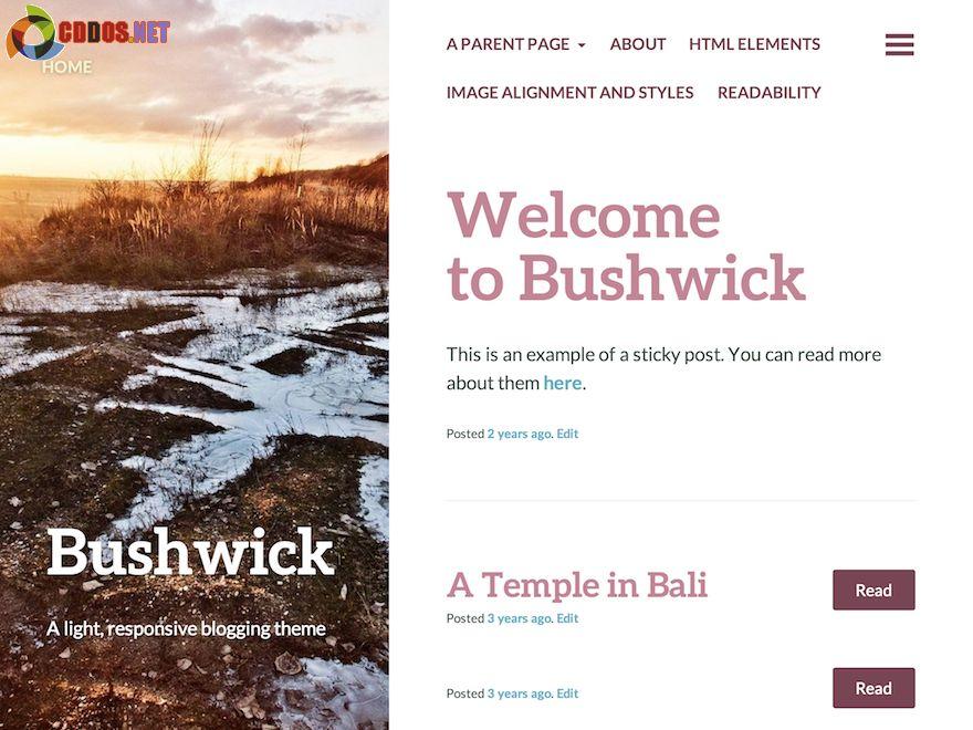 Bushwick - Theme cho blog cá nhân