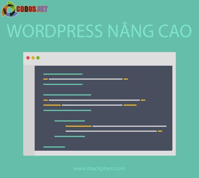 wordpressnangcao-banner