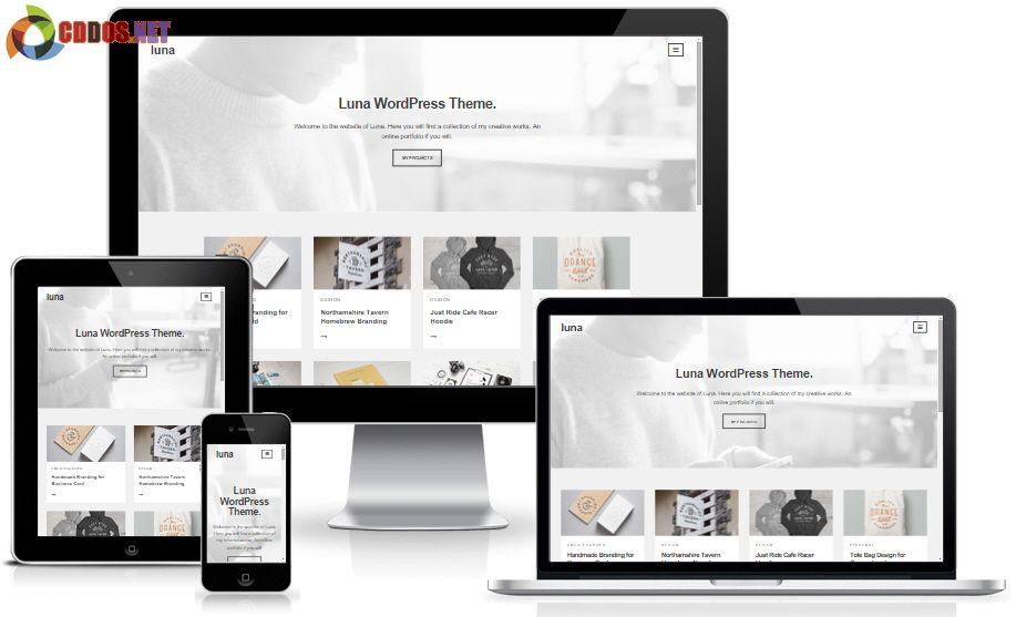 luna-wordpress-theme
