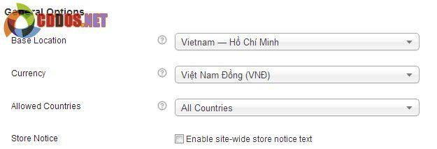 Kích hoạt Việt Nam Đồng