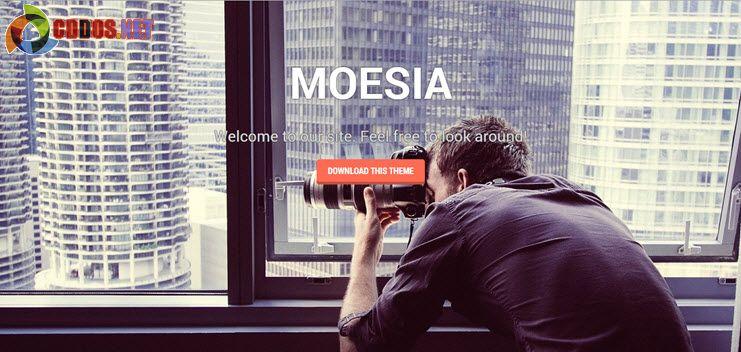 moesia-theme