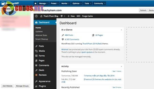 Truy cập dashboard nhanh không cần đăng nhập