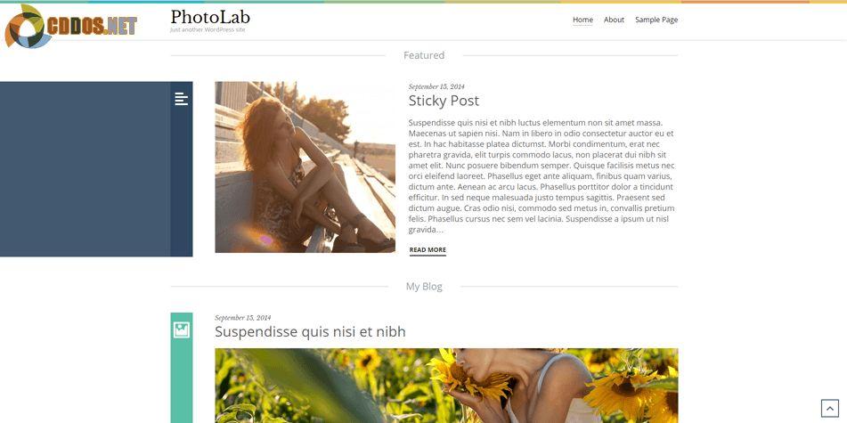 photolab-theme
