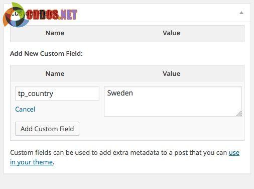 Thêm custom field và giá trị của nó vào bài