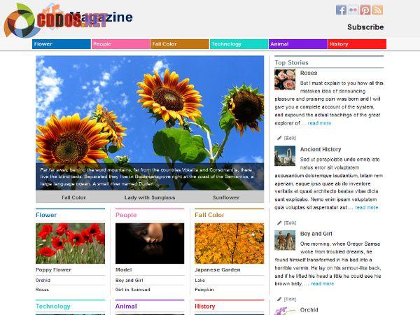 xinmagazine-theme
