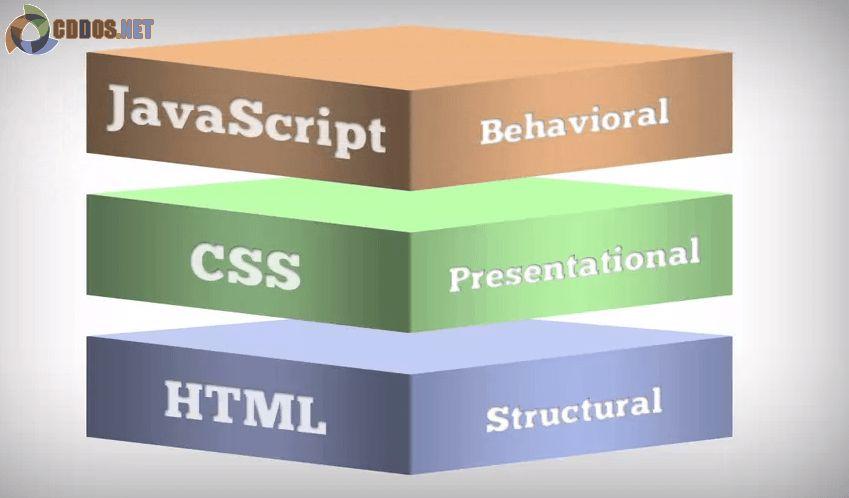 Vai trò của từng ngôn ngữ trong website