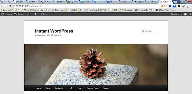 Cài đặt WordPress trên localhost với 1 cú click