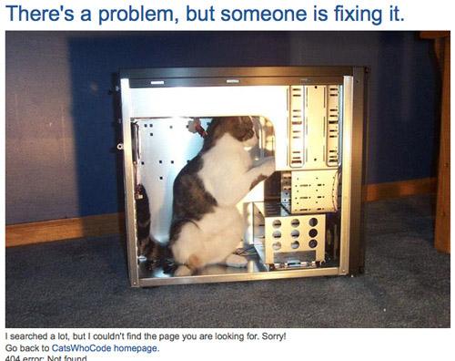Trang báo lỗi 404 vui nhộn của Catshowcode